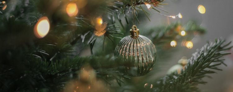 Protect Your Ornaments With Intercept Technology™ Bags